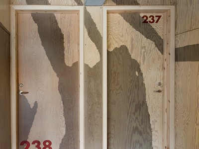 Moderne døre med en overflade af krydsfiner. | Modern doors with a surface made from plywood.